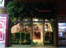 【生活】走進日本的超人氣 「貓頭鷹主題Cafe」